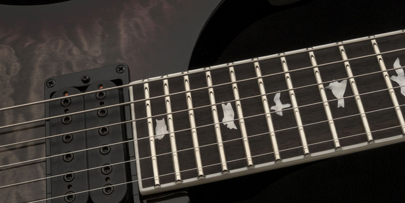 PRS Guitars Bird Inlays